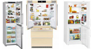 Uzziniet par ledusskapju mūsdienu funkcijām un to veidiem