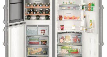 Mūsdienu ledusskapis: kā tas atšķiras?